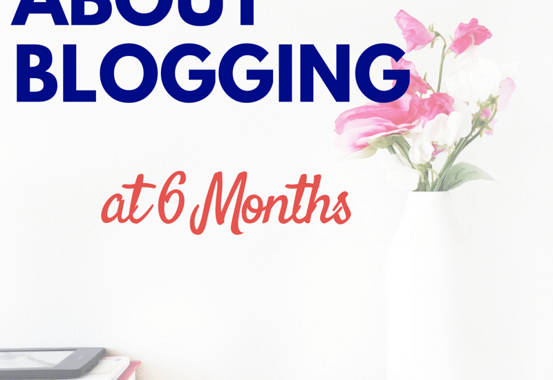 What happens after 6 months of blogging? My experiences so far and what is to come in the next year. Click to read my experiences so far!