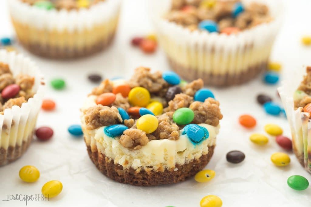 Gluten-Free-Monster-Cookie-Cheesecakes