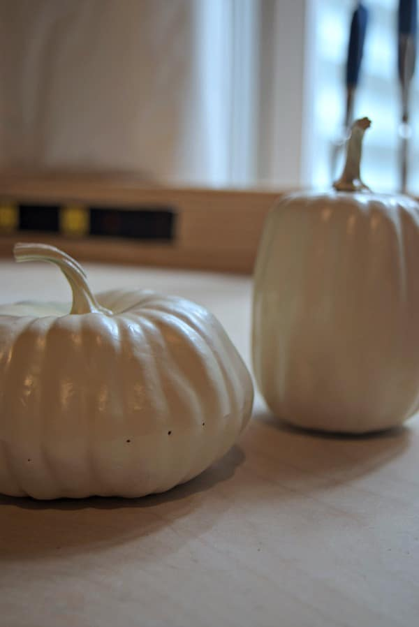 Ivory white painted pumpkins are perfect for this DIY pumpkin filler hack