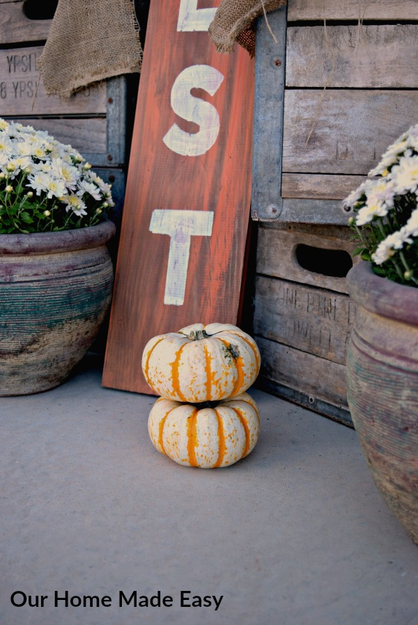 These adorable mini pumpkins are the perfect accents for our Fall front porch