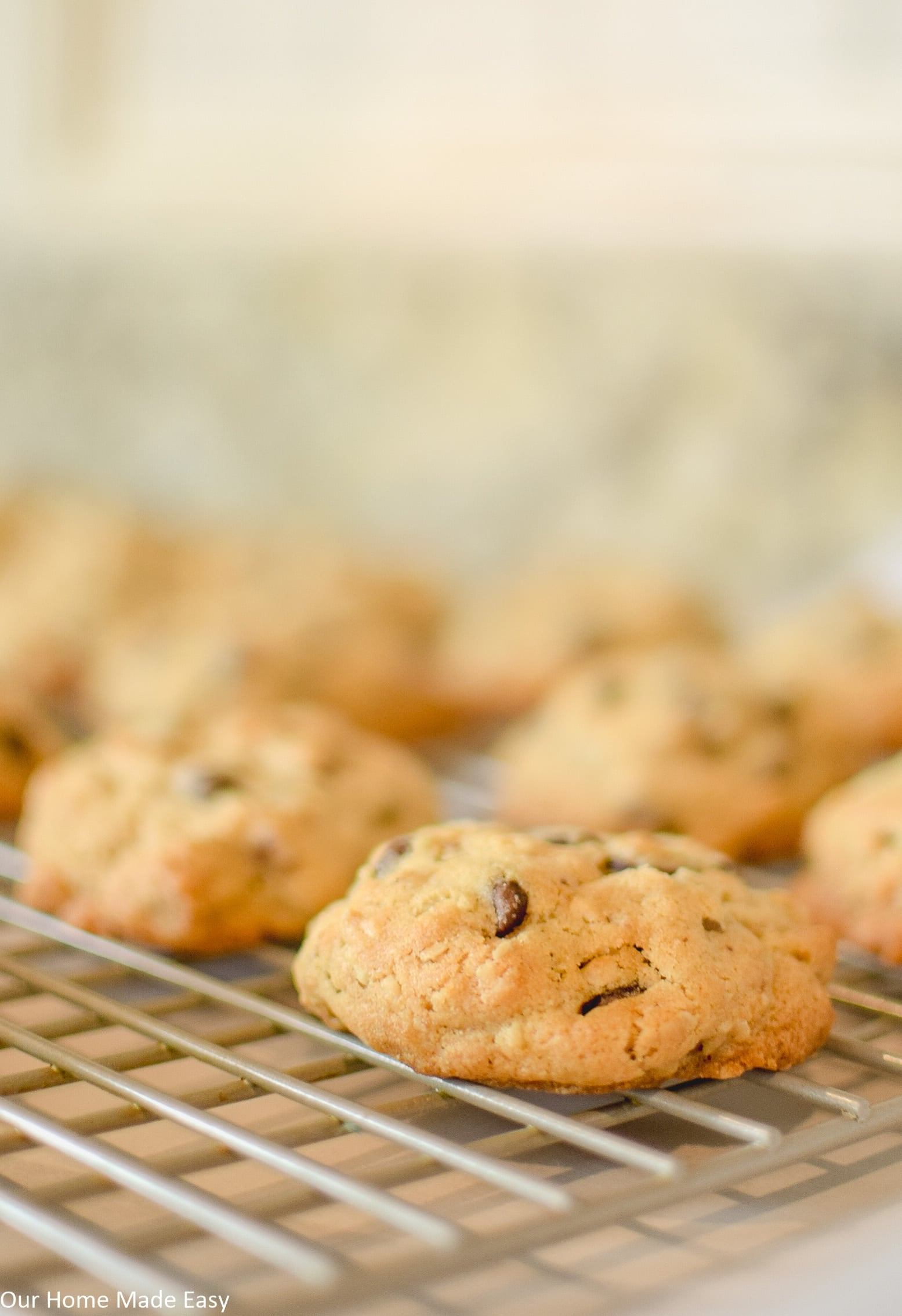 this cowboy cookie recipe is a simple, sweet, and nutty chocolate chip cookie that's too easy to make