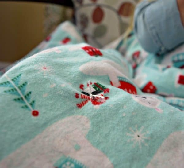 Super Soft & Cozy Winter Flannel Blanket for less than $10!