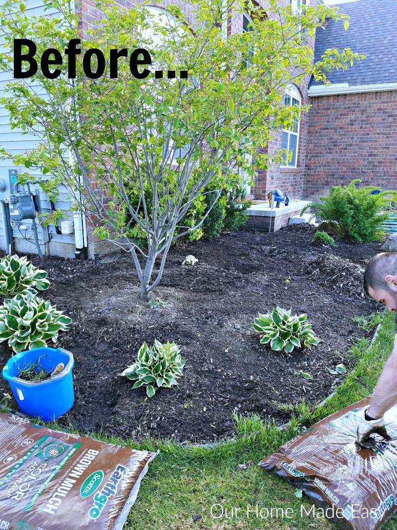 Take a look a thow we easily updated our flowerbeds without spending much time on the weekend. See the summer outdoor space and flowerbeds here!