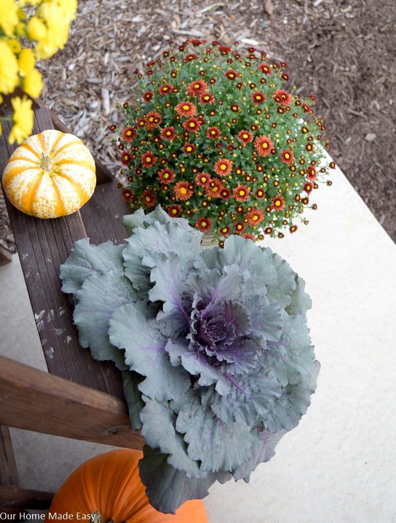 Potted rustic orange mums and ornamental kale plants add a fresh touch to our fall front porch