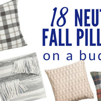 18 Favorite Neutral Fall Pillows