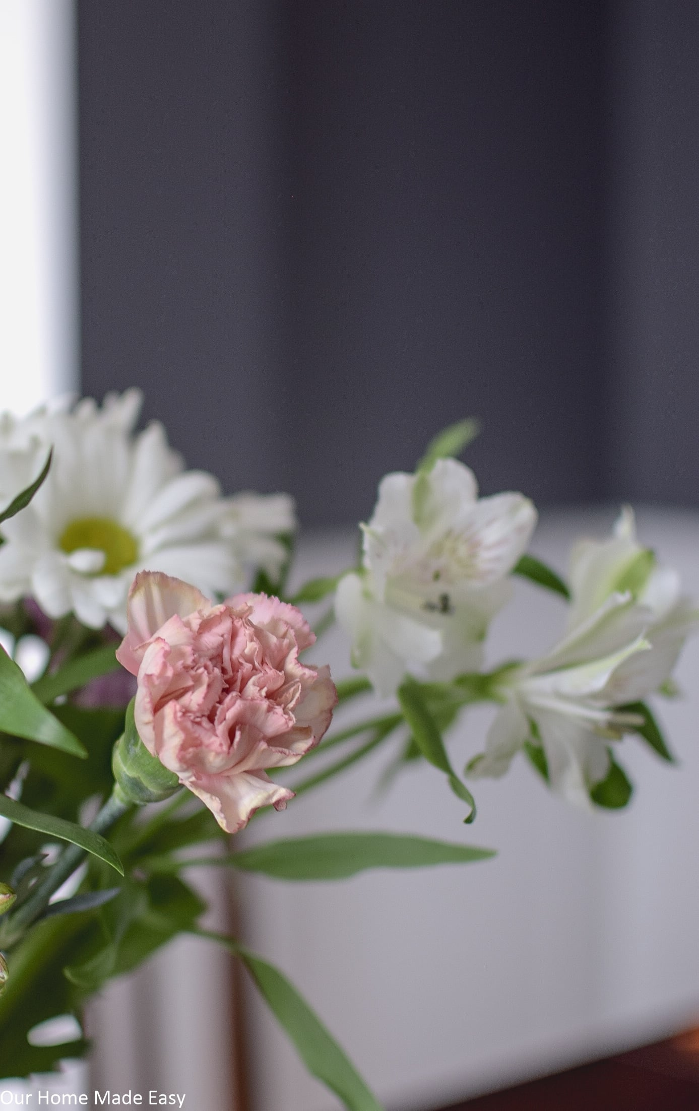Fresh spring flowers, white daisies and pink carnations