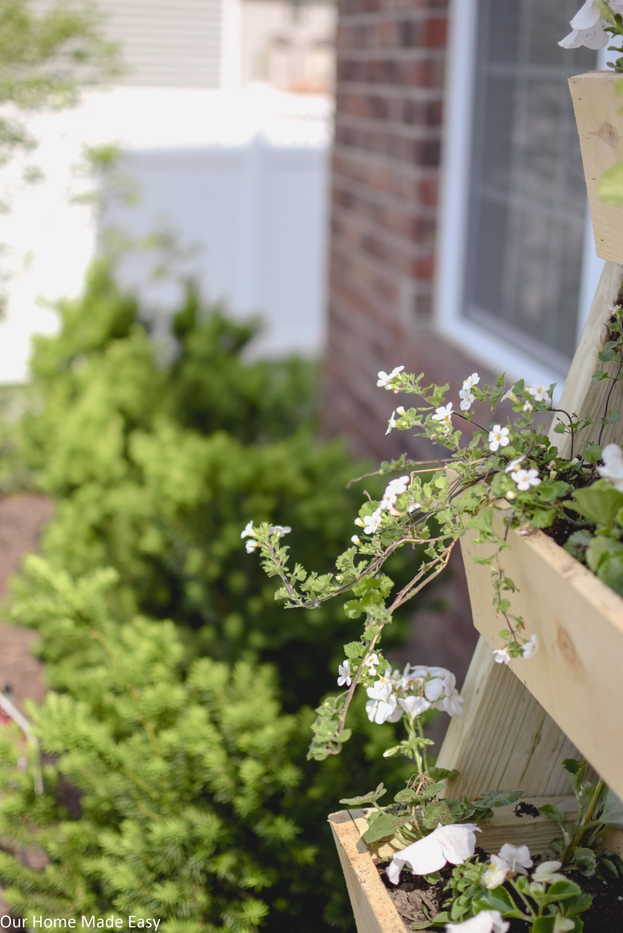 This DIY cedar latter planter is perfect for small plants, herbs, or flowers!