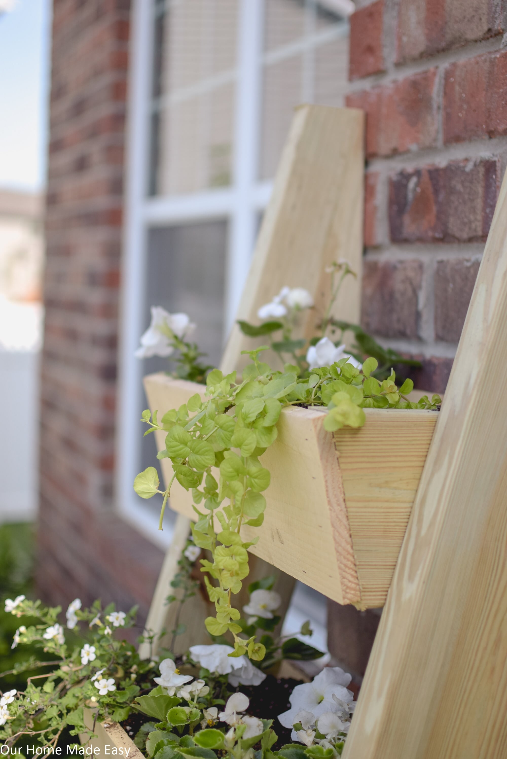 This cedar ladder planter is an easy DIY that doesn't require much woodworking skill
