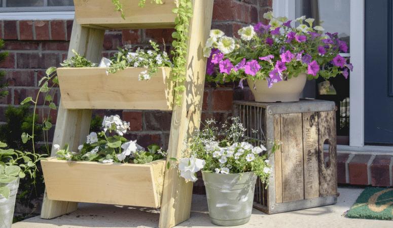 $20 DIY Cedar Ladder Planter