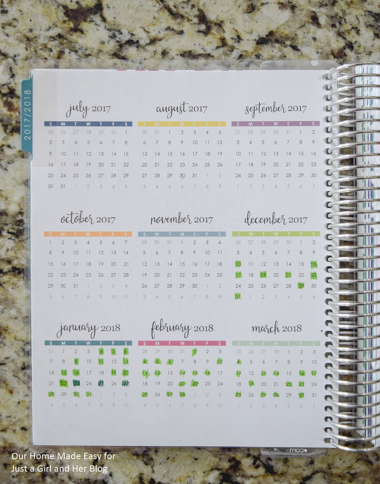 Brilliant Idea for Using the Year at a Glance Planner Pages