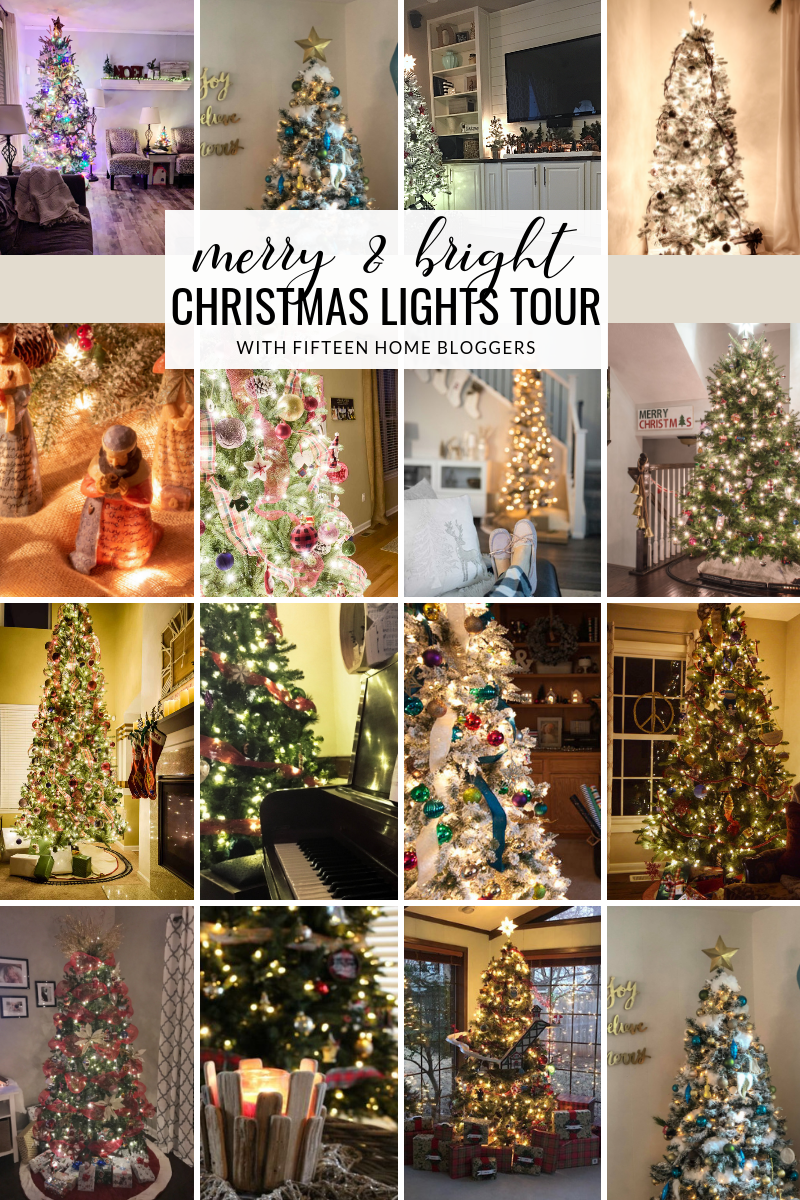 Merry and Bright Christmas Lights Tour