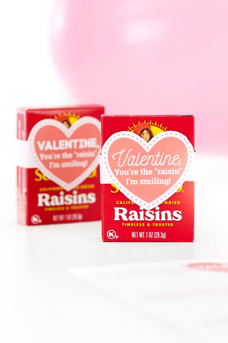 """You're The Raisin"" Valentine"